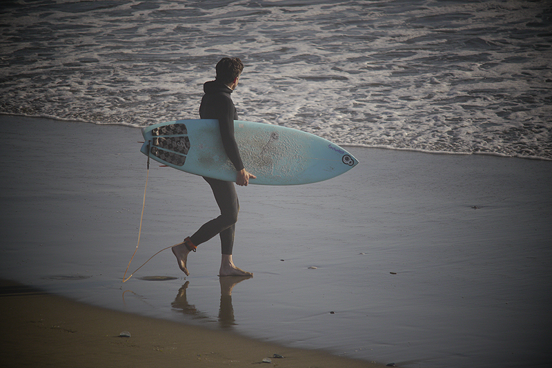 SURFING-SLOAT_TOAD-CARRY-BOARD-INTO-OCEAN.jpg