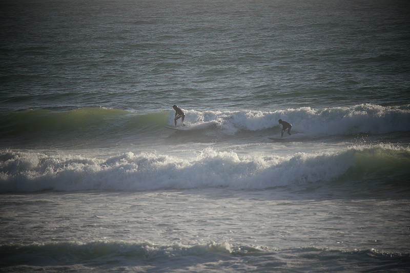 SURFING-SLOAT_TOAD-DOUBLES.jpg
